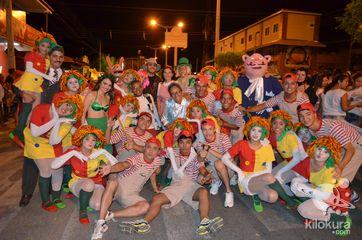 Jaguar Fest 2015 - Zanzuê Kids - Foto 15