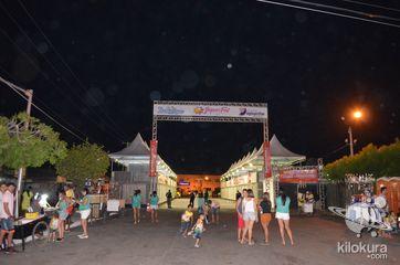 Jaguar Fest 2016 - Bloco Zanzuê Kids - Foto 294